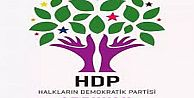 HDP ARGUVAN İLÇE KONGRESİ YAPILDI