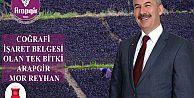 ARAPGİR#039;İN MOR REYHANI COĞRAFİ İŞARET BELGESİ ALAN İLK BİTKİ OLDU