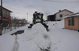 Arguvan'da kar yağışı etkili oldu