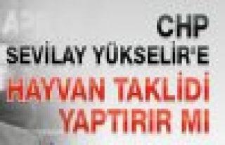 CHP'NİN OY ORANI %24 ÜSTÜNDE OLURSA HAYVAN TAKLİDİ...