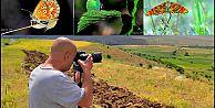 ARGUVANLI HEMŞEHRİMİZ HÜSEYİN KOÇ 150 TÜR KELEBEĞİ FOTOĞRAFLADI